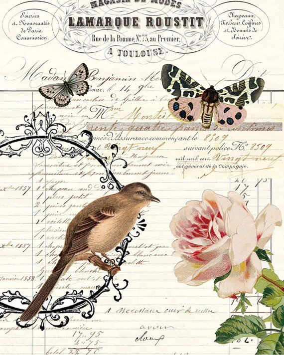 Art Print Botanical Collage digital vintage ledger French bird butterflies floral FRAMED via Etsy