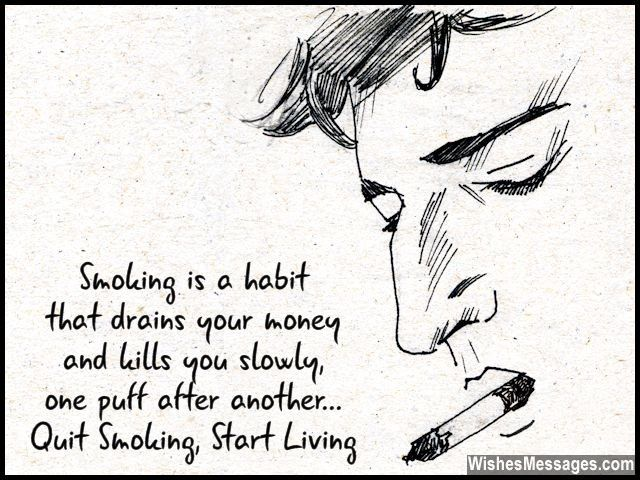 1000 smoking quotes on pinterest looking for alaska