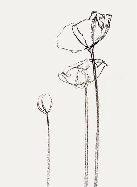 Fleurs   – sticker