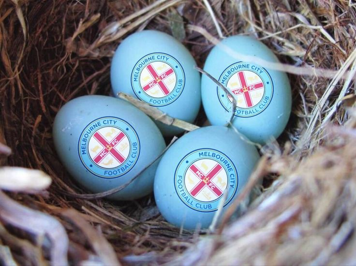 Happy Easter Melbourne City