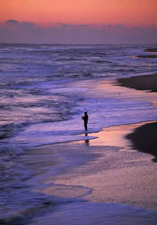 Best 25 surf fishing ideas on pinterest surf fishing for South carolina surf fishing