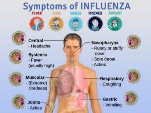 Influenza, influenza symptoms,  influenza virus, what is influenza, influenza