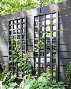 Dat spiegels een ruimte groter laten lijken, is bekend. Weten hoe je je tuin optisch 2 keer vergroot? Lees de volgende tips.