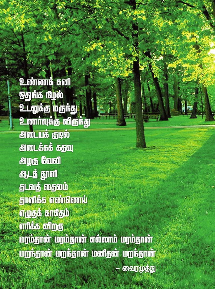 205 best images about tamil on pinterest kanyakumari for Cuisine meaning in tamil