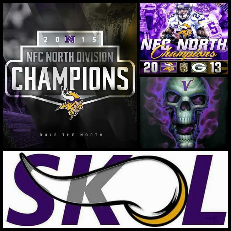 2015-2016 NFL NFC Division Champs