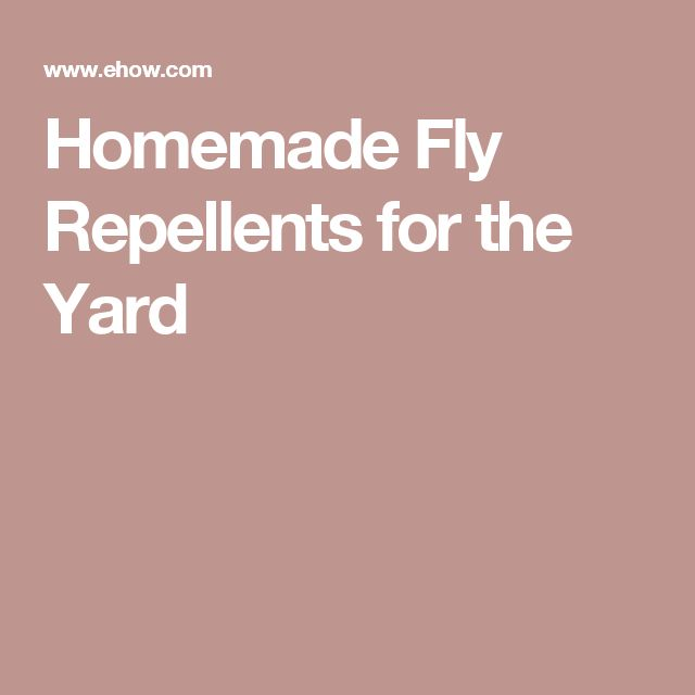 Homemade Fly Repellents for the Yard