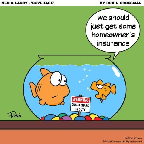Homeowners Insurance Quote Classy 37 Best Insurance Humor Images On Pinterest  Insurance Humor Funny . Design Decoration