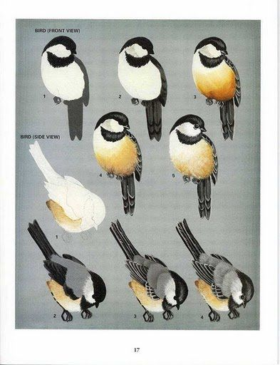 Elizabeth Cavalcante,pintura e arte.: PAP pintura de passarinhos.