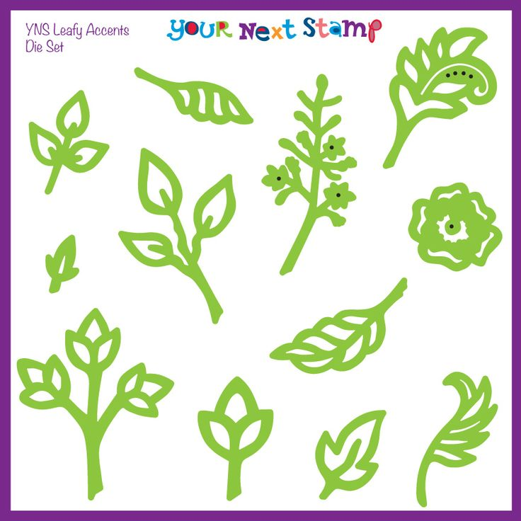 YNS Leafy Accent Die Set [YNSD78] - USD19.00 : Your Next Stamp