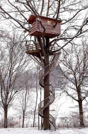 "tinyhousesmallspace: ""Tree House w/ a spiral staircase """