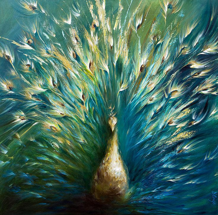 Peacock Painting by Dina Dargo - Showoff 3 White Peacock Fine Art ...900 x 886 | 323.3KB | fineartamerica.com