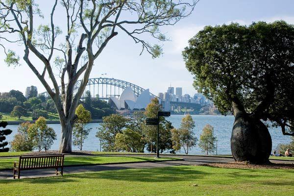 Eucalypt Lawn, Royal Botanical Gardens, Sydney