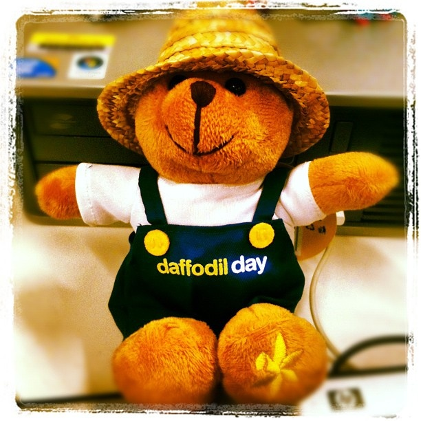Supporting the cause... http://www.daffodilday.com.au/