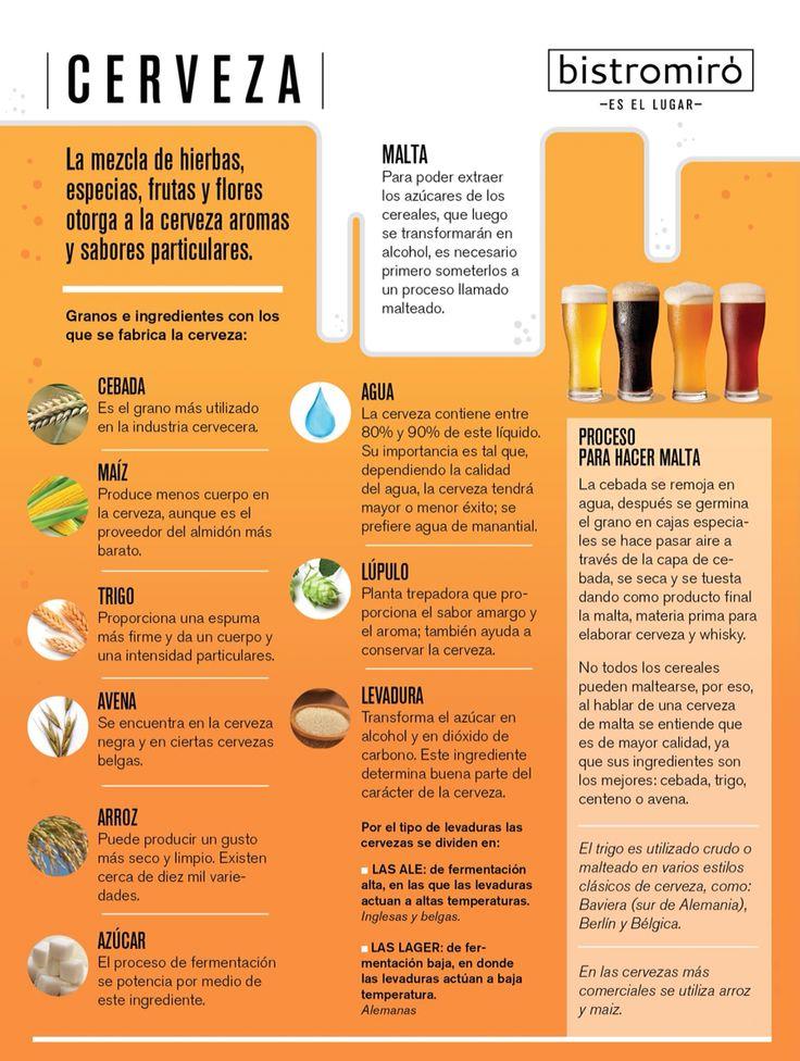 Infografía Cerveza Beer