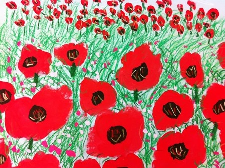Poppies in Perspective