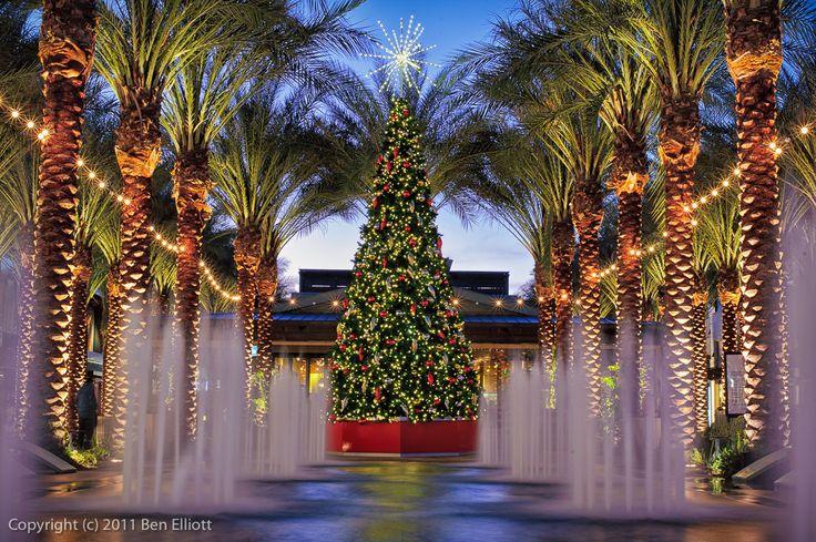 9 Best Christmas In Scottsdale Images On Pinterest