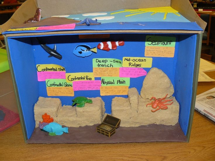 31 best school project images on pinterest school projects dioramas of the ocean floor google search sciox Images