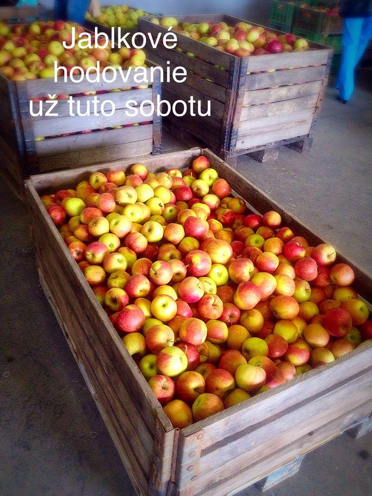 Jabĺčko bolo a je skvelé