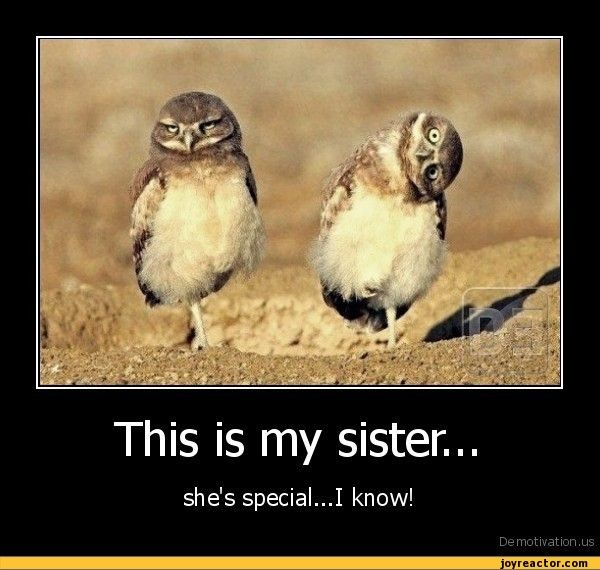 Funny Sister E-cards | This is my sister...she's special...I know!De motivation, us ...