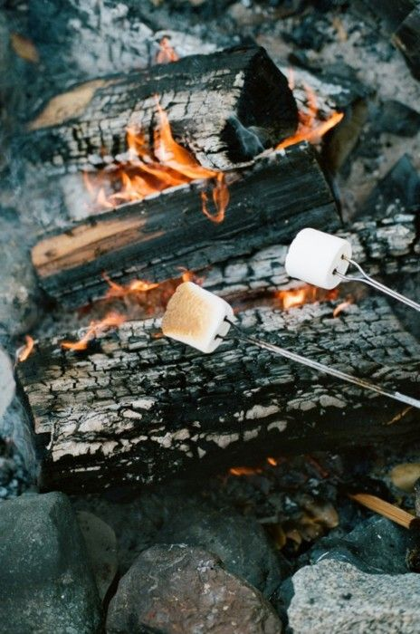 Roasting marshmellows over a campfire.                                                                                                                                                      More