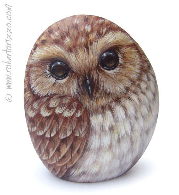 Original Hand Painted Rock de Chouette hulotte