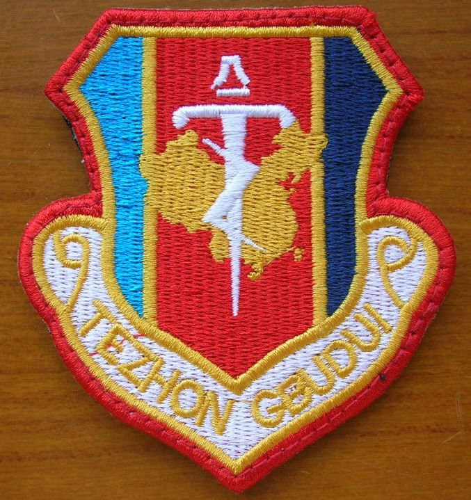China PLA 42 Army Guangzhou Military Region Southland Sword Special Forces Patch