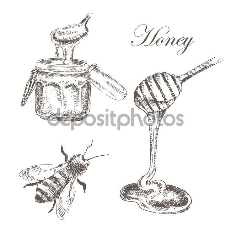 Yükle - Tatlım, honeycells, honeystick, arı illüstrasyon vektör. doğa nesnelerin ayrıntılı el çizilmiş kroki — Stok İllüstrasyon #92585312