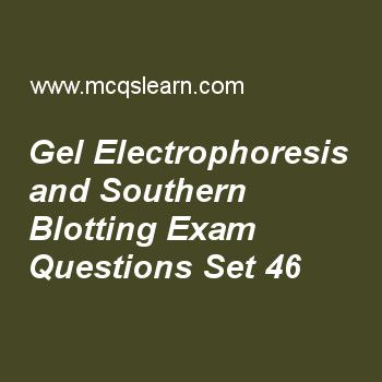 Practice test on gel electrophoresis and southern blotting, MCAT quiz 46 online. Practice gel electrophoresis and southern blotting test with answers. Practice online quiz to test knowledge on, gel electrophoresis and southern blotting, biogenetics and thermodynamics, atp synthase and chemiosmotic coupling, operon concept and jacob monod model, rna processing in eukaryotes, introns and exons worksheets. Free gel electrophoresis and southern blotting test has multiple choice questions as...