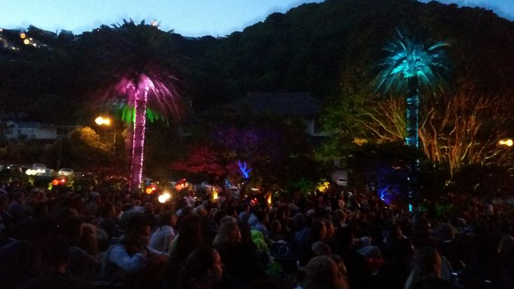 A musical performance is always enhanced by lighting up the surrounding trees in funny colours. Wellington Botanic Gardens, Summer City concert, January 2015.