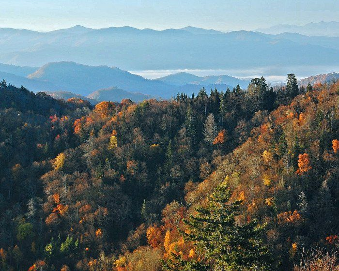 7) Or get WAY up high in the Great Smoky Mountains, where you'll swoon with the grandeur of it all.