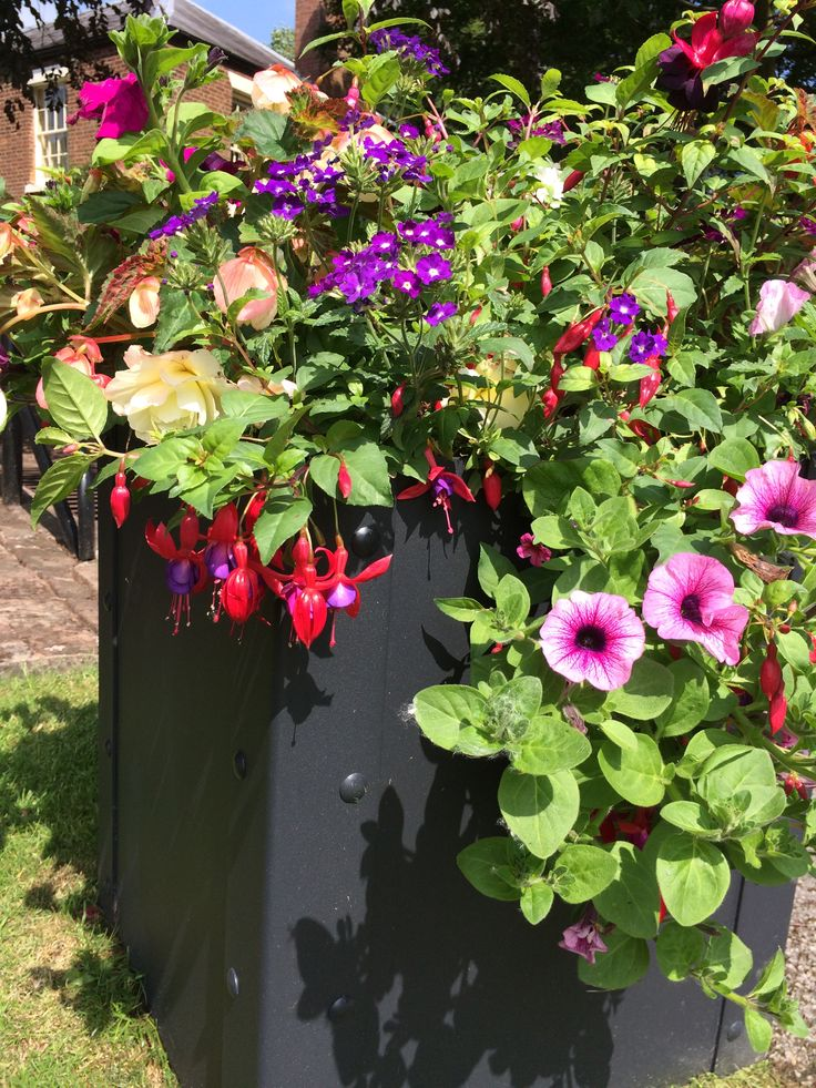 Once assembled, the EverEdge steel garden planter effortlessly produces a modern and elegant appearance, suitable for any garden from city terraces to large private grounds.