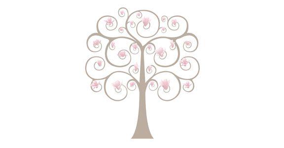 magnolia acupuncture