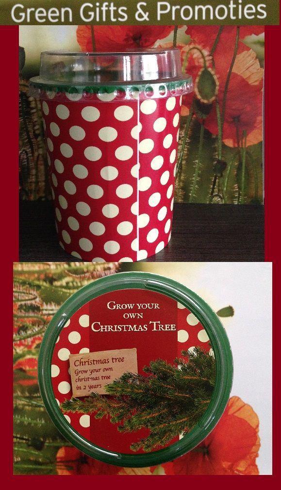 Bent u klaar voor een uniek kerstgeschenk voor uw klanten of werknemers? Dit jaar heeft iedereen zijn eigen kerstboom voorzien van de promotie van uw bedrijf of merk. Een kerstboom in een pot (9,5 op 10 cm) Verkrijgbaar vanaf 100 stuks: standaard aan 1,80 Euro per stuk  custom made aan 2,25 Euro per stuk Varianten zijn mogelijk: in jute zak (groot of klein), het kan ook in een grote pot (17 op 20 cm), tegen meerprijs. Info of bestellingen via info@publiall.be