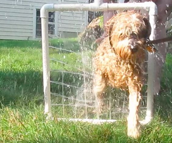 Cheap and Easy Pvc Handheld Dog Washer style                                                                                                                                                                                 More
