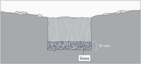 ¿Cómo mejorar el drenaje de su jardín?