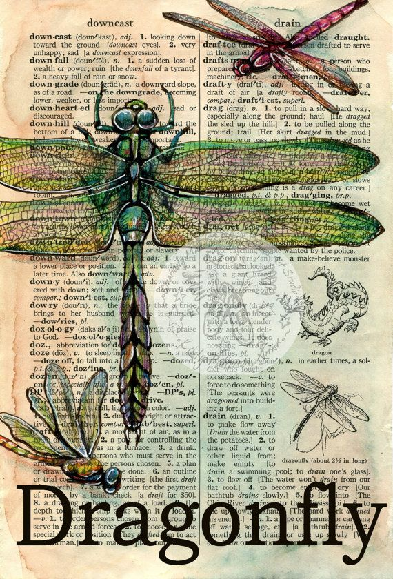PRINT:  Dragonfly Mixed Media Drawing on Distressed, Dictionary Page