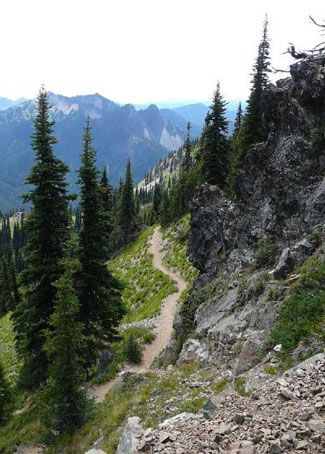 pct trail | Pacific Crest Trail ::Not sure where this is, but I'll bet it is in Washington~ it looks really familiar to me!