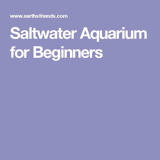 Best 10 saltwater aquarium setup ideas on pinterest for Starting a fish tank for beginners