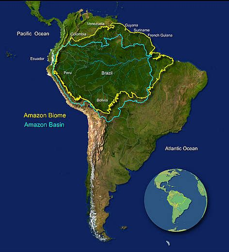 43 best Preservation and Conservation Of The Amazon images on - copy interactive world map amazon