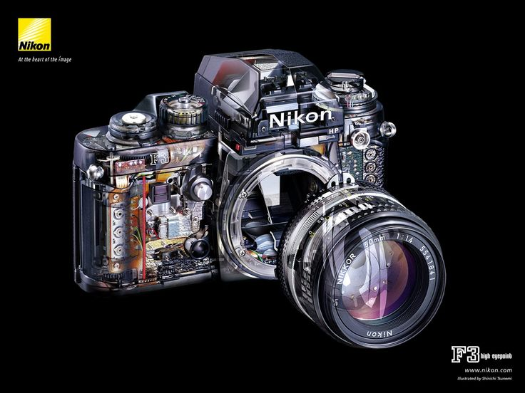 Introduction This Classic Camera Was Undoubtedly One Of The Biggest And Most Dividing Celebrity At Least Among Professional SLR Cameras Course