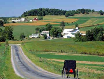 Berlin, Ohio ~ The largest Amish population in the United States is located in Holmes County, OH.  Fascinating shops, hardware, farms and Amish people.  Loved it!