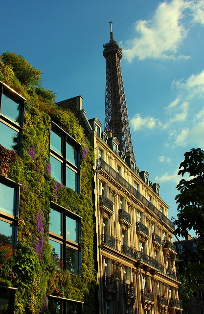 37 best Nouvel-Musee Quai Branly by James Krohn images on ...