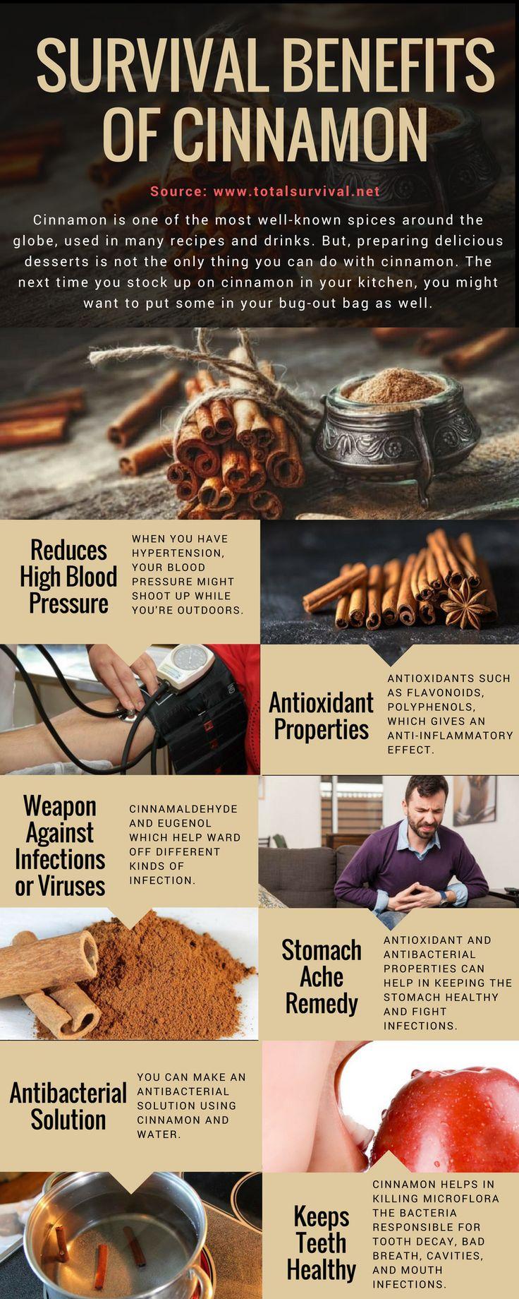 Survival Tips, Healthy Lifestyle Tips:7 Survival Benefits of Cinnamon. #natural #healthy #cinnamon #survival #offgrid #bushcraftmedicalkit