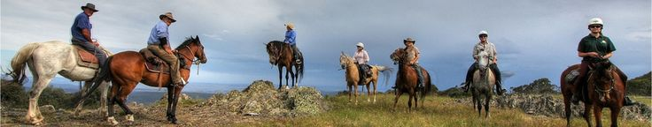 Cochran Horse Treks : Australia : Snowy Mountains : Brumbies : Fun : Riding : Bush : Country : Welcome to Cochran Horse Treks