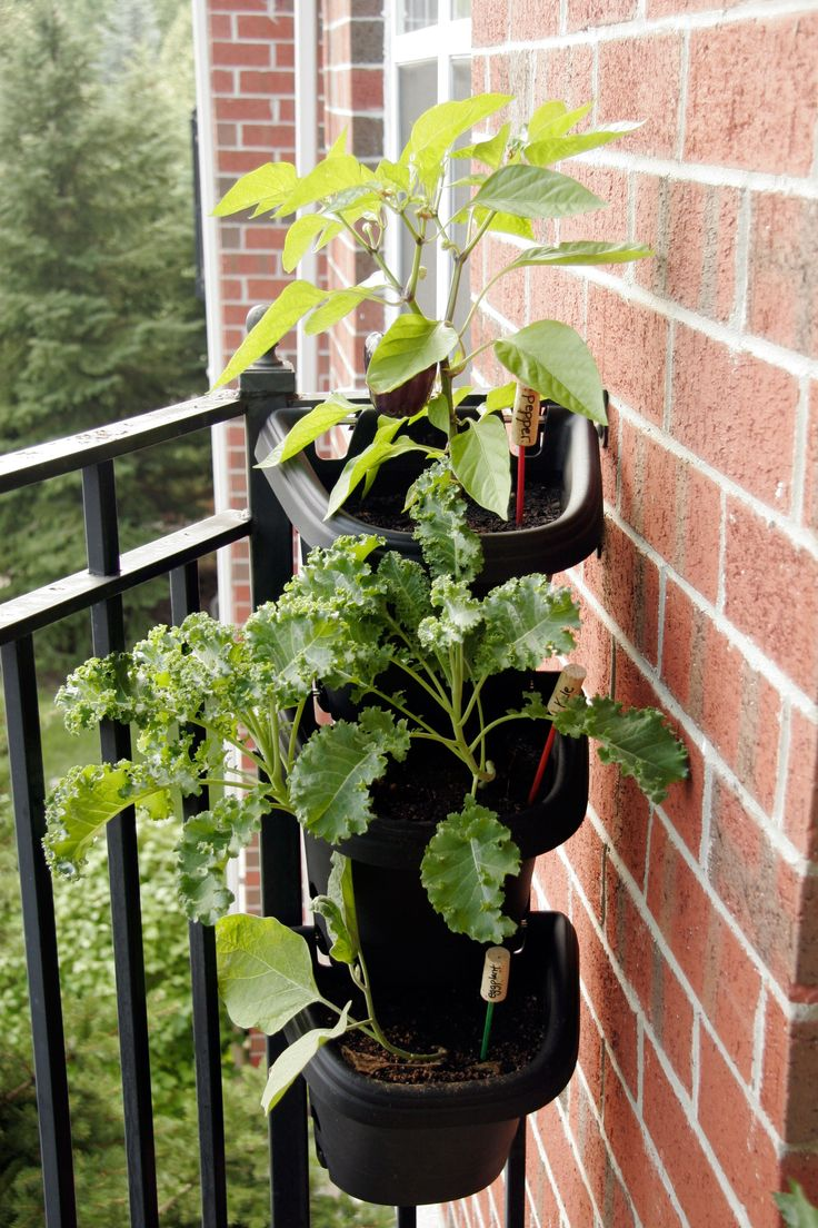 Go vertical! Tips for decorating a small apartment balcony