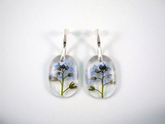 Flowers of forget-me-not preserved in resin  http://en.dawanda.com/product/49266798-Ohrringe---Vergissmeinnicht---925-Silber