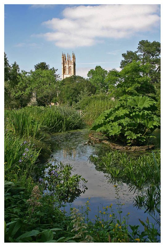 University of Oxford Botanic Garden with Magdalen College in the background. Oxford, England Copyright: Txxx Bxxx