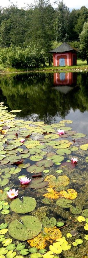 The Botanical Garden of Ruissalo, Turku, Finland (photo AN)