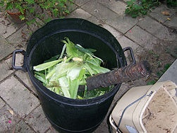 Build a Compost Container