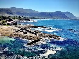Image result for things to do in Hermanus